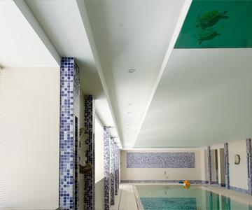 steiner-plafond-2